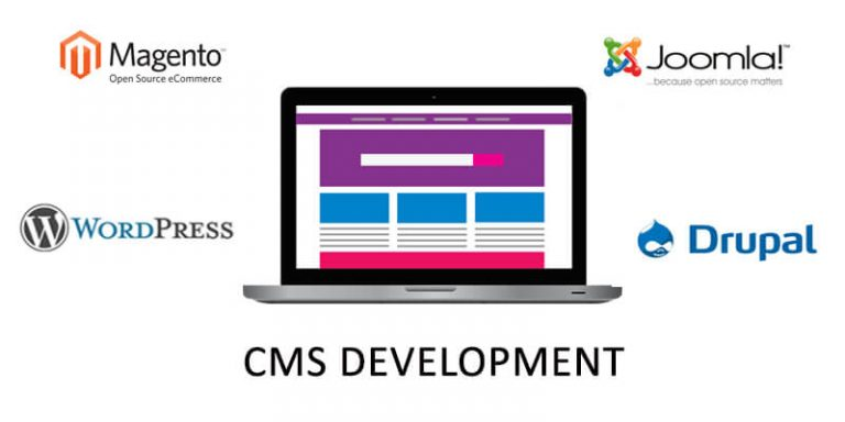 CMS Development Company Pune